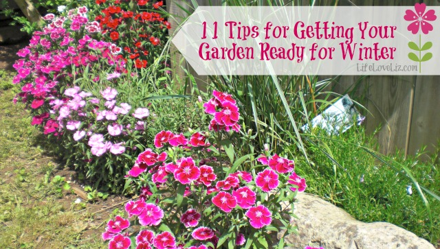 11 tips for getting your garden ready for winter life - Tips for a lovely garden ...