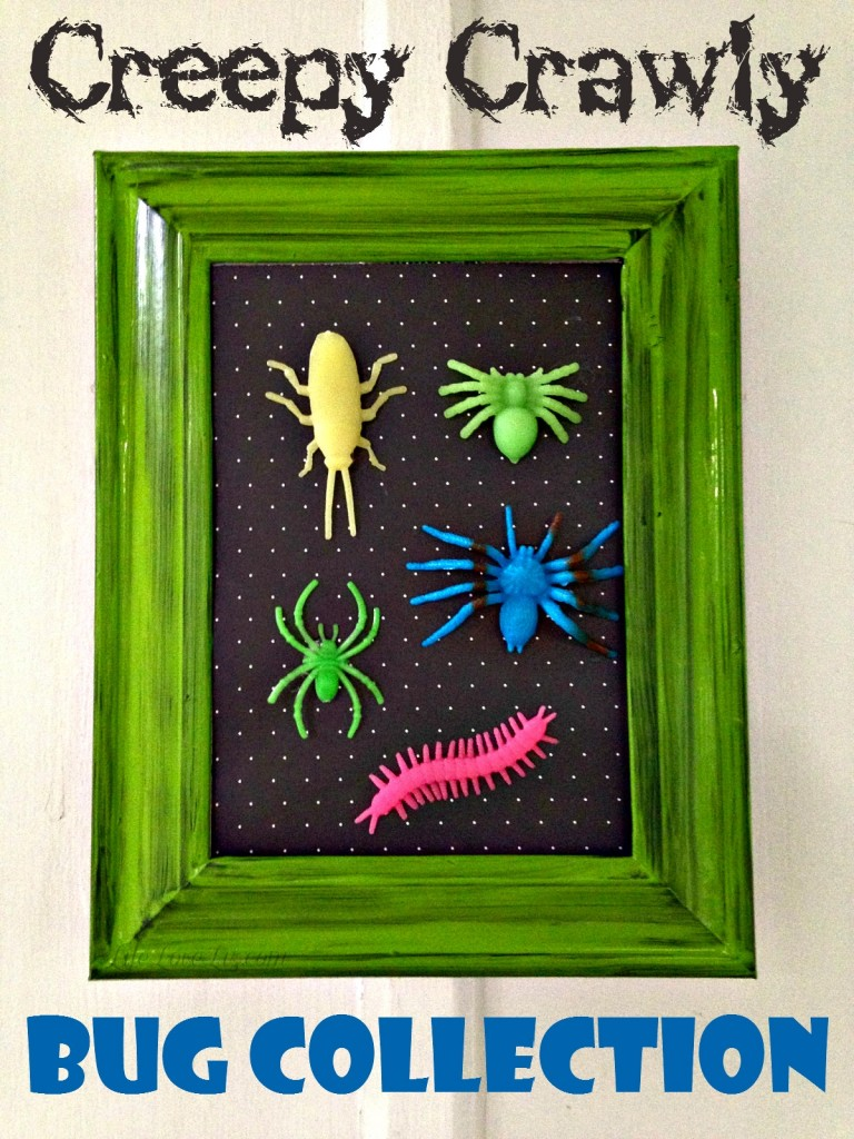 This Creepy Crawly Bug Collection is just about the most fun I've ever had with Halloween Home Decor!  Talk about Creepy Crawlies!