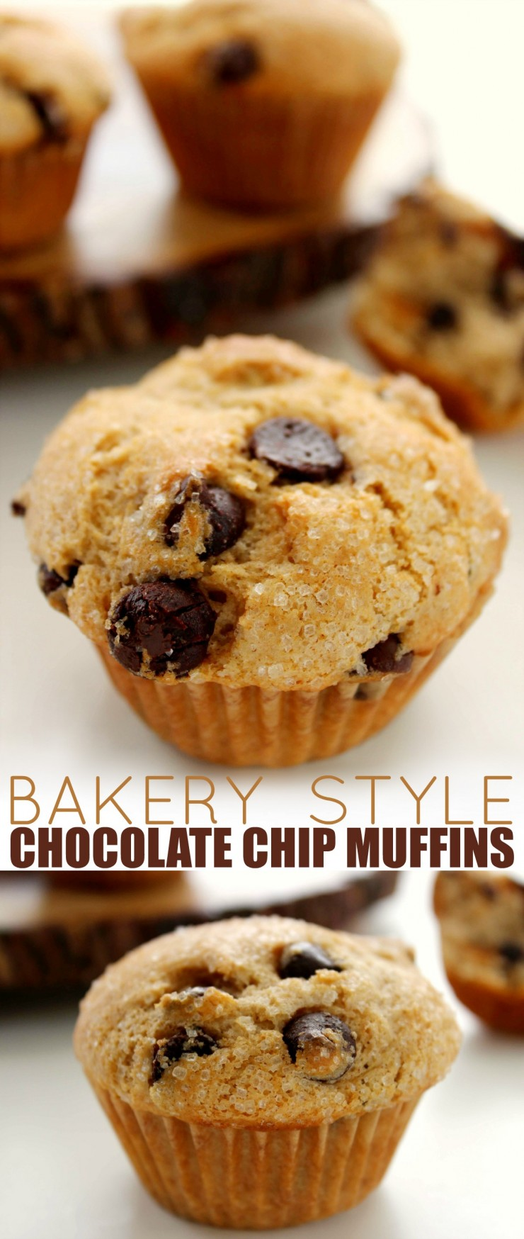 Bakery Style Chocolate Chip Muffins - Life Love Liz